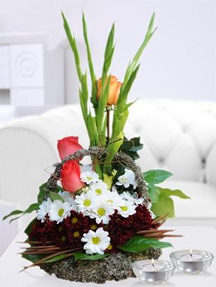 http://www.worldlinecargo.com/wp-content/uploads/2012/12/eleganta.jpg